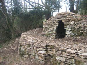 La Caborne des chênes tétards