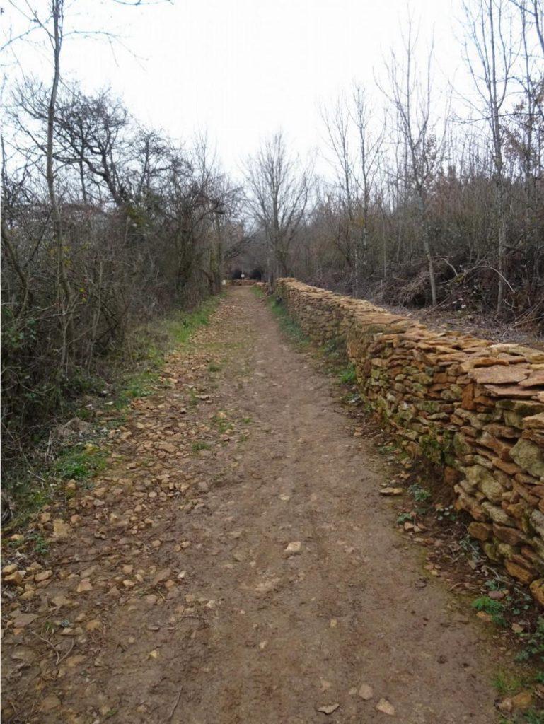Chemin des Vignes